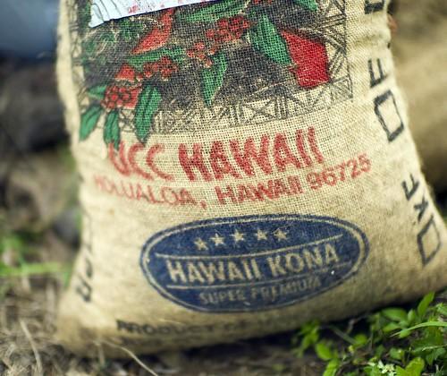 Growing Kona Coffee   by Christopher.Michel