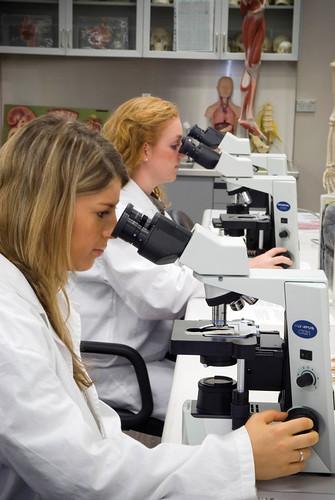 Students use microscopes