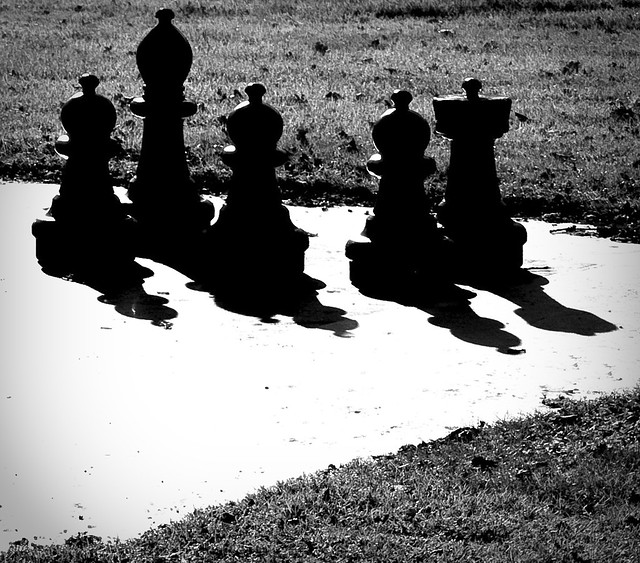 playing chess with the shadow...