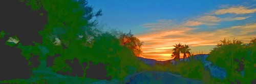 sunset panorama pano landscape scape nature colors trees palm blue outdoors