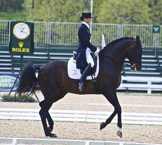 Leonberg & M Gunderson - 2010 Kentucky Cup | by Just chaos