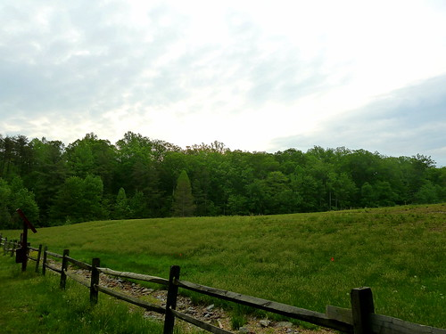 Cedarville State Forest May 2010 | by krossbow