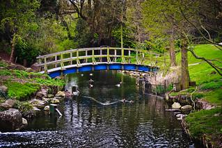 Regents Park Bridge   by garryknight