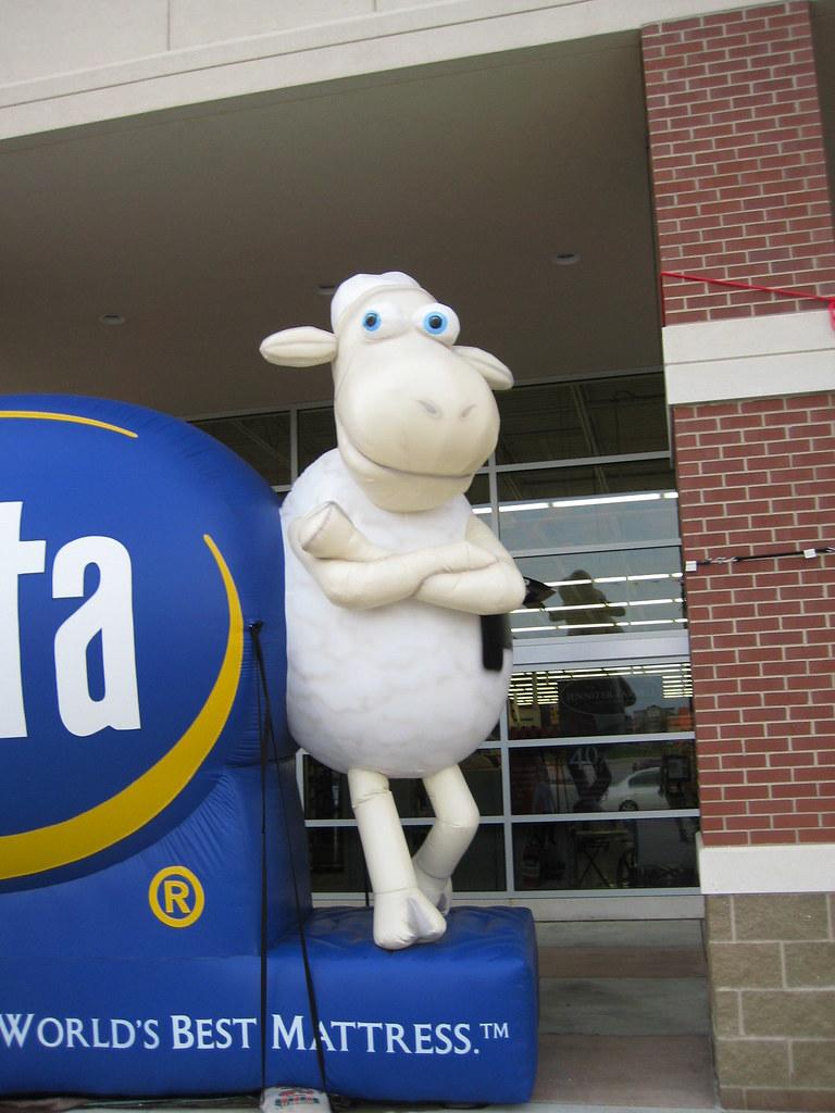SERTA SHEEP COMMERCIAL SERTA SHEEP COMMERCIALS SERTA MATTR FLICKR