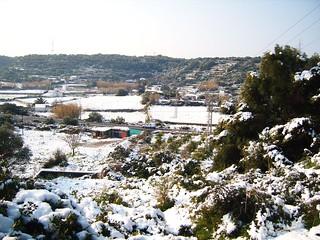 Nevada a Menorca 2010
