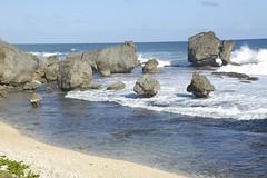 Barbados - Martins Bay [Dsc_5156]   by smendes