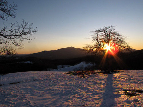 winter sunset mountain mountains tree landscape march northcarolina landschaft blueridgemountains blueridgeparkway appalachianmountains appalachians grandfathermountain westernnorthcarolina southernappalachians ccbyncsa moseshconememorialpark canonpowershotsx10is