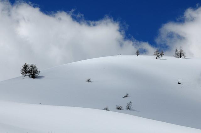 Last snowfall - Colle della Maddalena (Col de Larche) # 1
