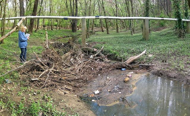 Anne Elmore, Sewage line over unnamed creek, Trog Sink, Cookeville, TN