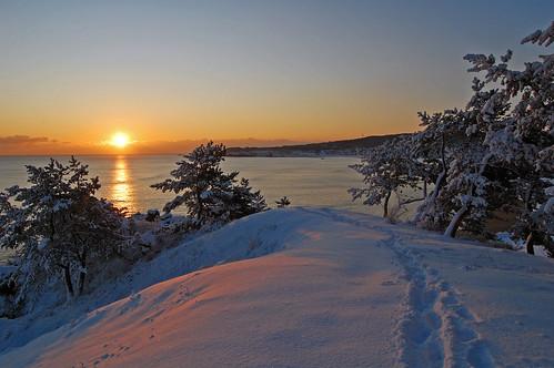 ocean sun japan sunrise coast pacific pacificocean aomori hachinohe tohoku aomoriken aomoriprefecture hachinoheshi aomoriprefectureaomorikenhachinoheshitohokuregion
