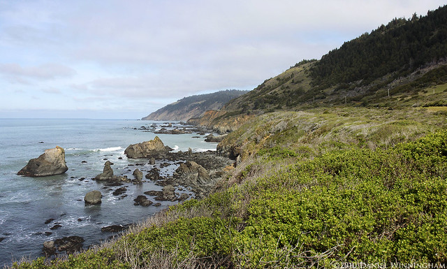 Lost Coast, CA