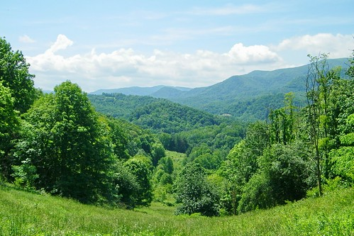 field appalachian grassy