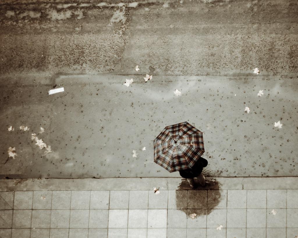 la lluvia lava las heridas