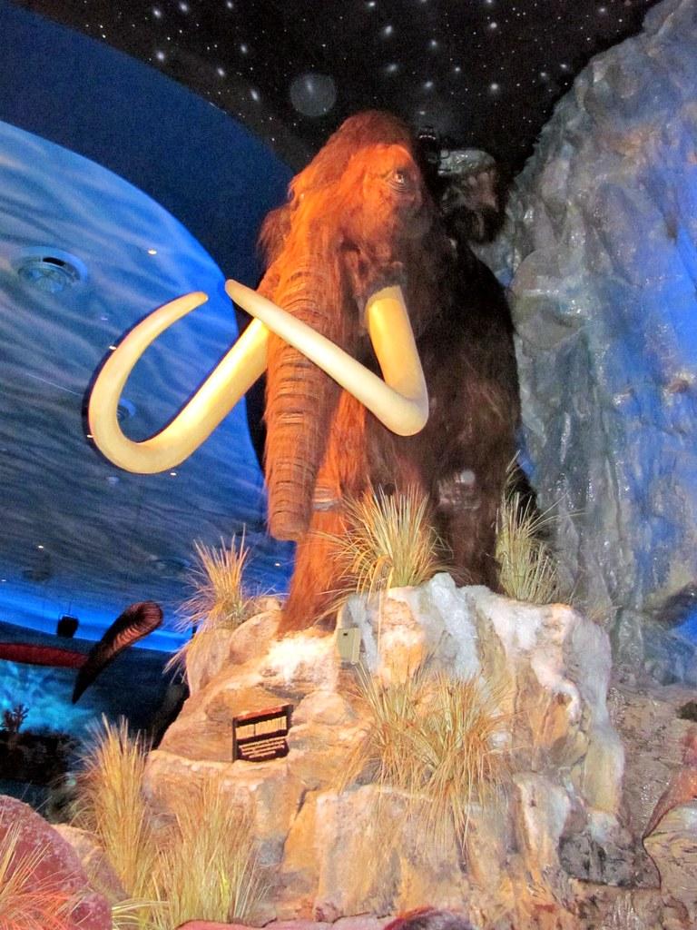 Mammoth | T-Rex Downtown Disney Orlando, Florida | Daniel ...