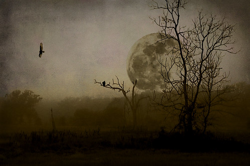 light two moon surrealism surreal manipulation eerie creepy spooky worlds mysterious moonlight tallahassee myster