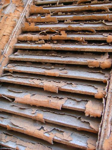 Despintado - Mérida México 2009 3871 | by Lucy Nieto