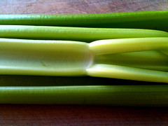 Celery Stalks | by TheDeliciousLife