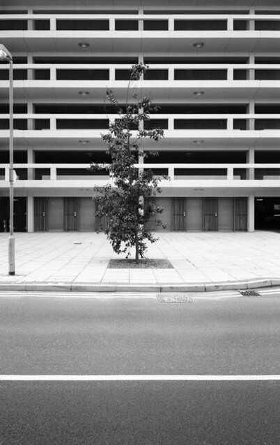 Car park 1. Exterior levels 1-4 with tree.