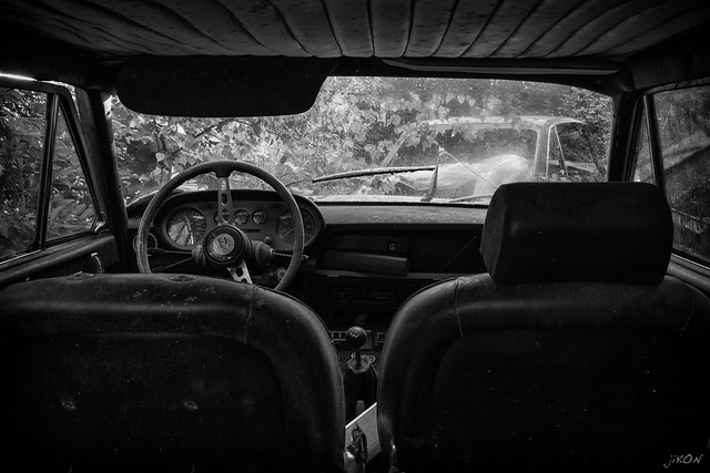 inside the lancia in the woods