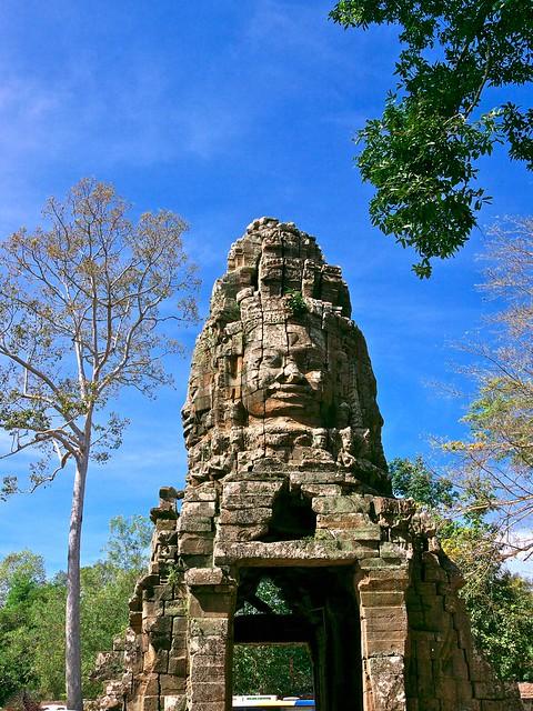 Cambodia: Siem Reap, Ta Prohm Temple  Day 2