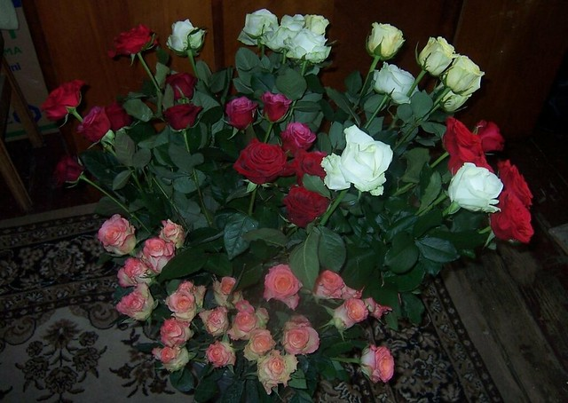 Mylimiausios gėles(Veidrodinis vaizdas)