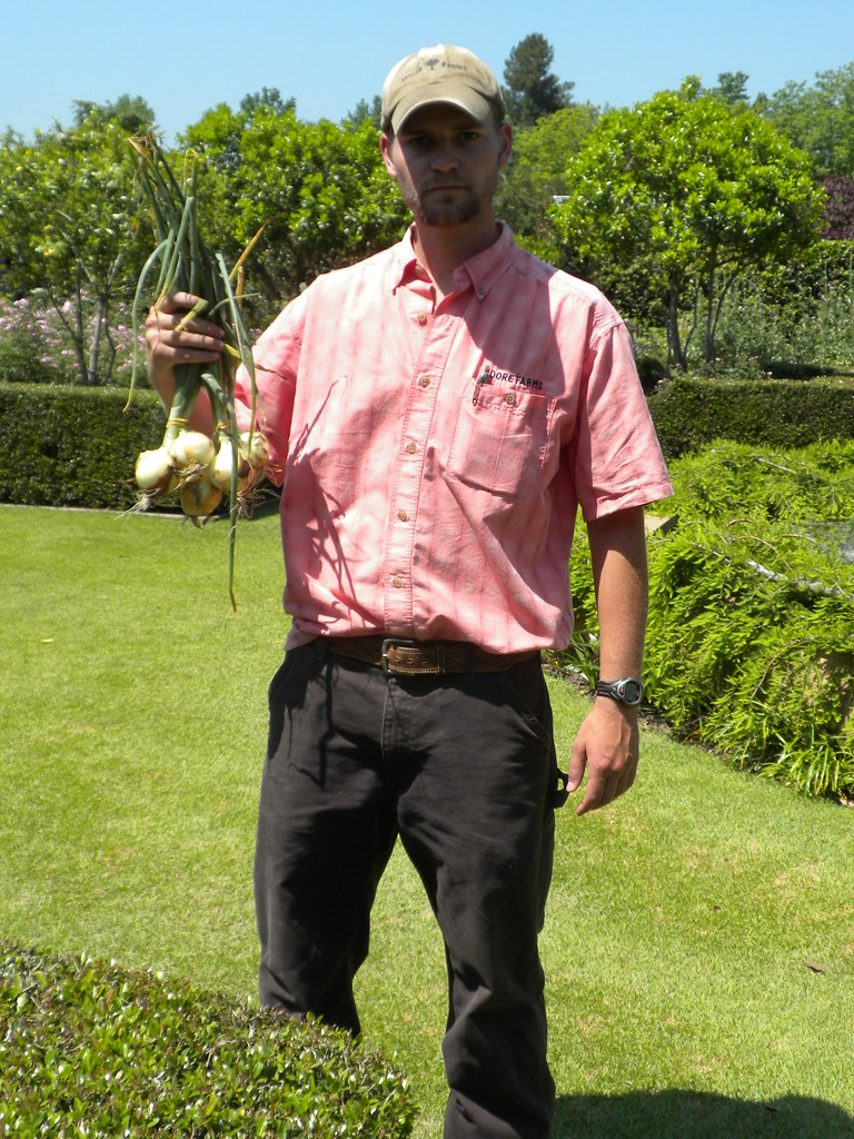 Evan with freshly-harvested onions.