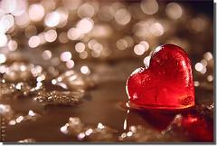 Heart | by seyed mostafa zamani