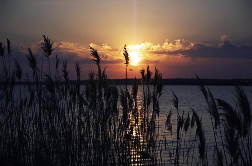 ocean city chris sunset water reeds island restaurant nikon kaskel d70s maryland fagers