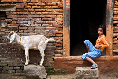 nepal orange topf25 girl goat doorway kathmandu bhaktapur lpchildren