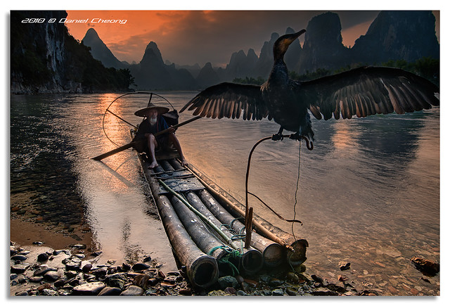 The Old Fisherman and his Cormorant [2]