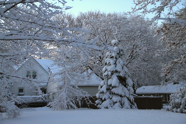 Morning after a snow storm, 22 Parker Rd (2010)