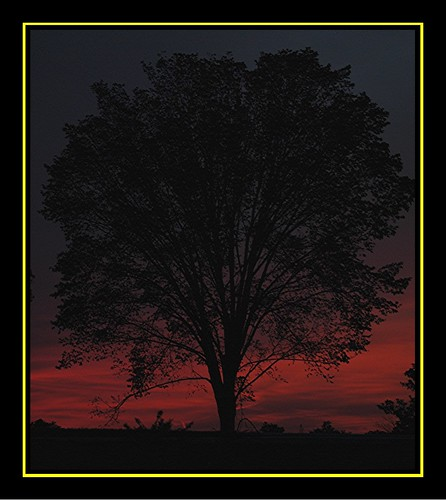 sunset nature mississippi geotagged jpg jpeg flickrivercom flickrhivemind taggalaxy