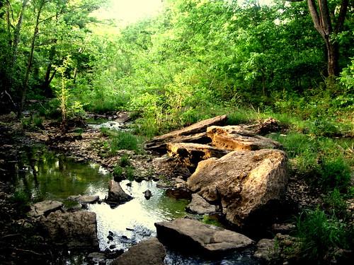 park oklahoma nature creek forest river albert carl durant