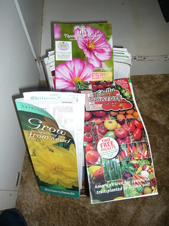 Seed catalogues | by brianpettinger