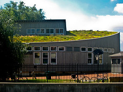 Living Classrooms Foundation Green Roof