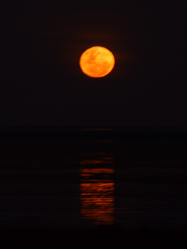 Moon in Broome