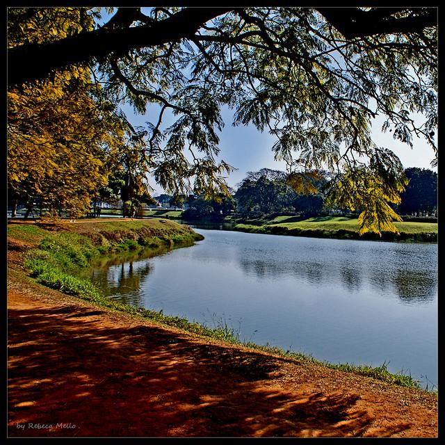 A lake ...a shadow ...