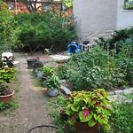 Winner's Circle Garden