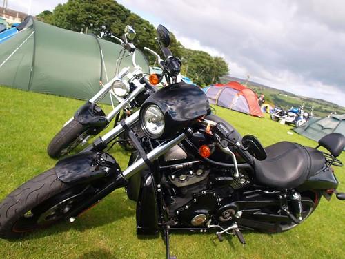 Harley Davidson Motorcycles | by imagetaker!