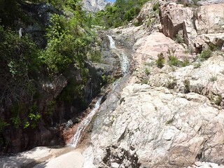 Confluence 571m : la branche à escalader vers Bocca di Lariciu