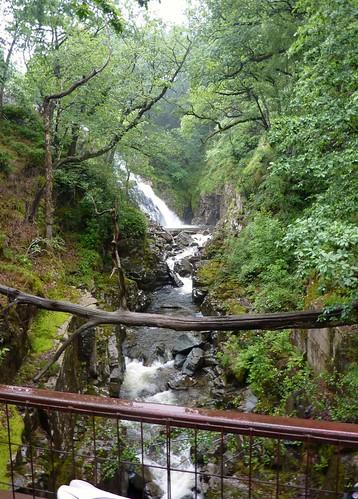 Coed y Brenin Waterfall (14/07/2010)