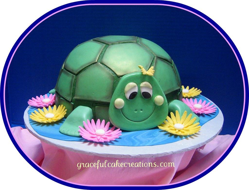 Groovy Turtle Birthday Cake Grace Tari Flickr Funny Birthday Cards Online Inifofree Goldxyz