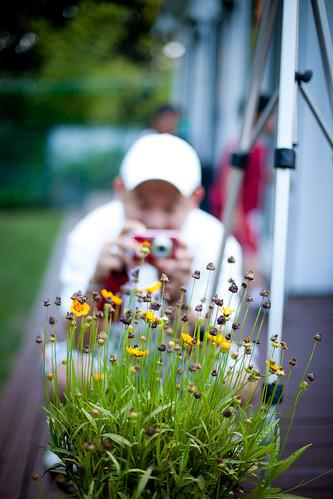 The Obligatory Flower Shot | by WhereWeveBeen