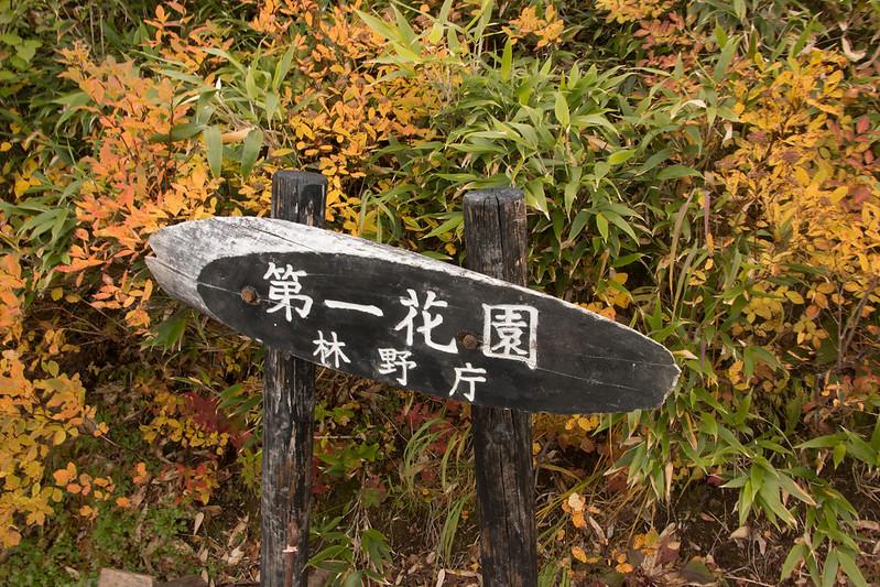 20150918-大雪山黒岳-0805.jpg