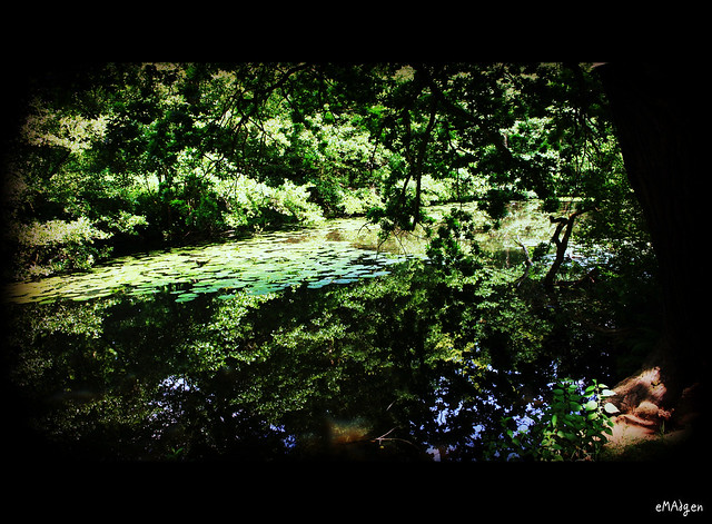 Between the Weirs