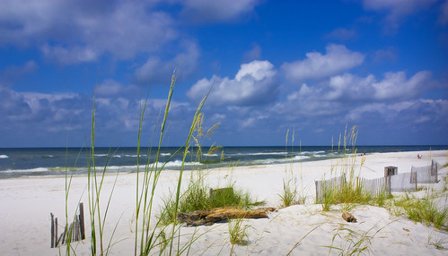 Gulf Shores Alabama Beach   by John W. Tuggle
