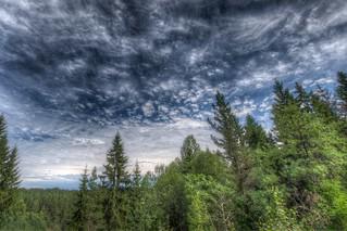 Aremark skies