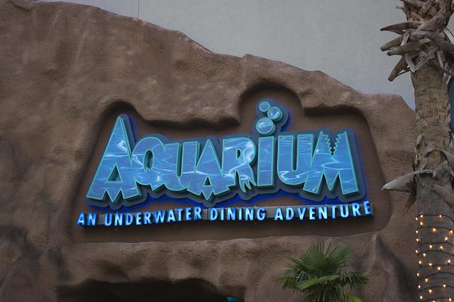 Aquarium Jacki