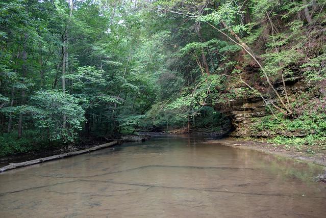 Cane Creek, Window Cliffs area, Putnam County, Tennessee