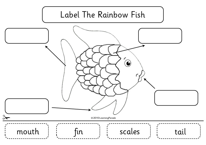 rainbow fish diagram | by learning parade